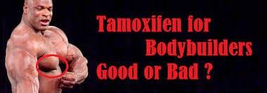 Tamoxifen für bodybuilder. Gut oder schlecht? 14