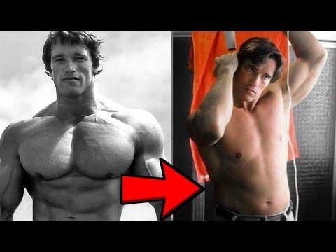 Die Rolle von Steroiden im Körper